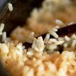 korichnevij ris