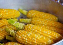 Нежная кукуруза на пару